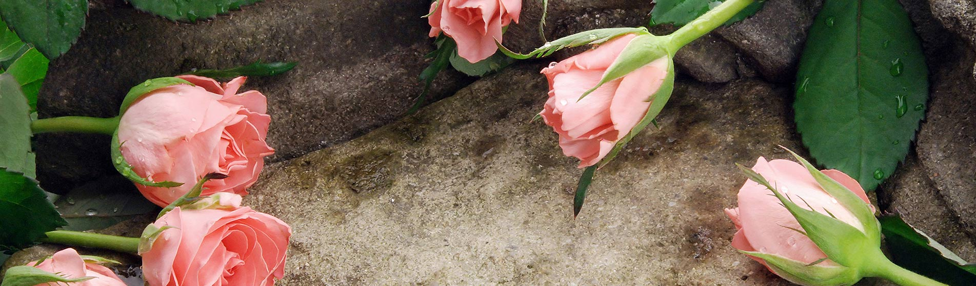 Hamvasztásos vagy koporsós temetés Pécs
